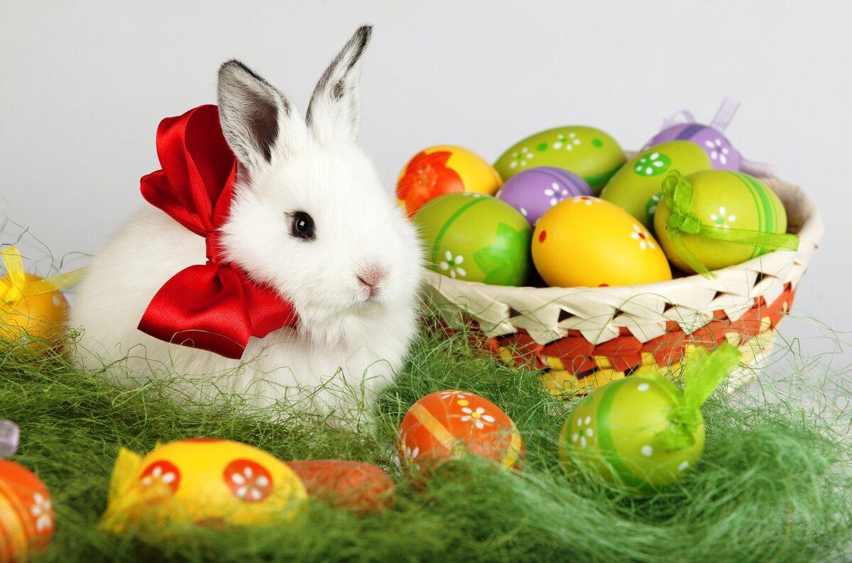 Урок по теме Easter